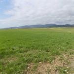 O ζεόλιθος στη γεωργία