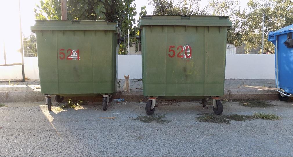 «Έξυπνοι» κάδοι ανακύκλωσης στα Χανιά… μπαίνουν στο ίντερνετ κι ενημερώνουν