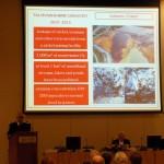 Κρήτη: 5ο διεθνές συνέδριο για την διαχείριση βιομηχανικών και επικινδύνων αποβλήτων